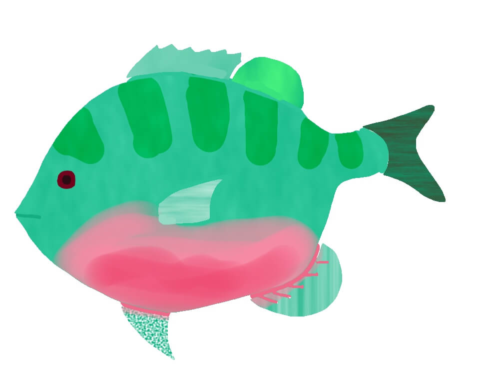屁理屈ばかりの魚