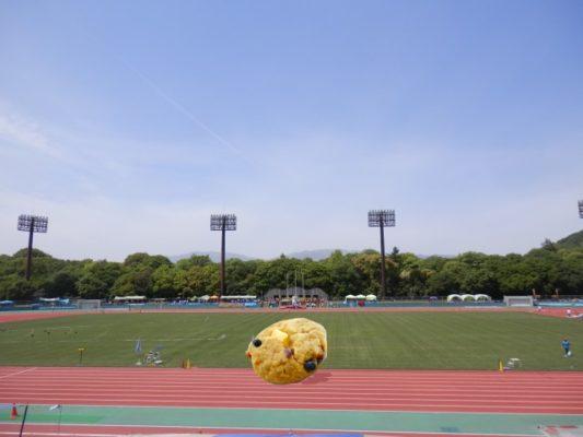 陸上競技場とソフトマフィンクッキー