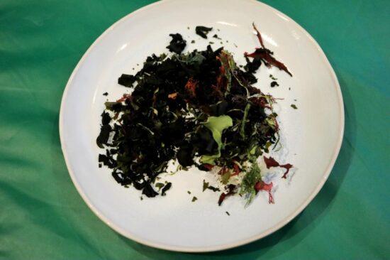 熊本の6品目の海藻の全量