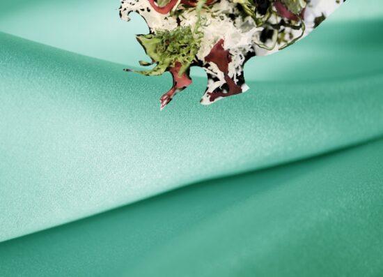 シルクサテンと熊本の6品目の海藻
